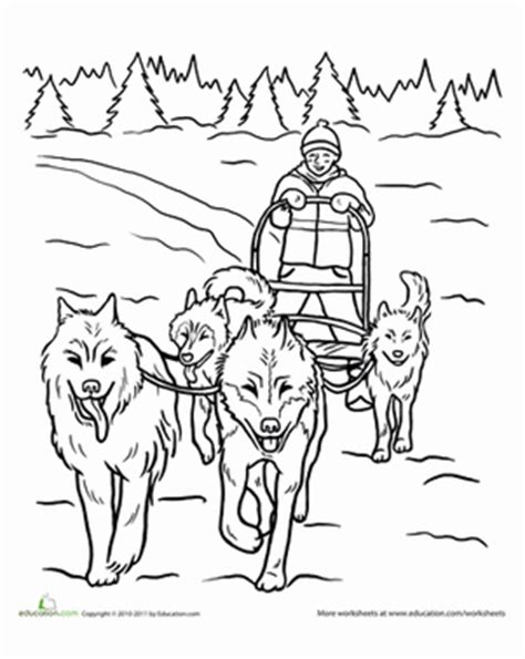 coloring pages of dog sledding dog sled worksheet education com