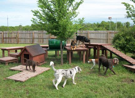 backyard toys for dogs best 25 playground ideas on outdoor