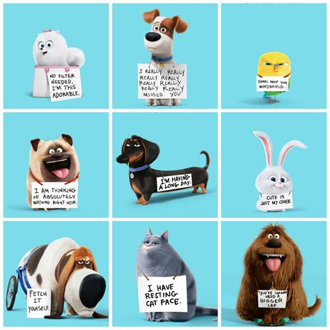 Stonestreet by The Secret Life Of Pets Trailer And Say Hello To My Fur