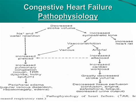 congestive failure chf pathophysiology commonpence co