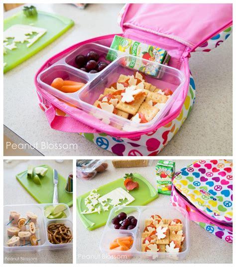 box ideas for kindergarten kindergarten lunch box ideas