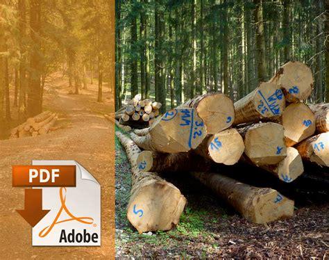 Holz Für Badezimmermöbel by Jugendzimmer Bett Ideen