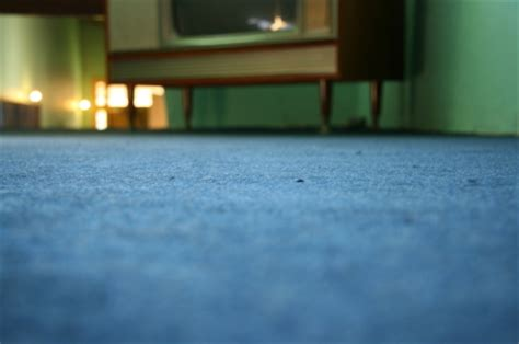 how to get rid of smell in carpet how to get rid of musty smell in carpet carpet cleaners talk local talk