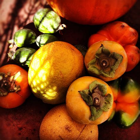 orange colored fruit assorted orange colored fruit duncan roy s