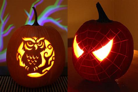 pumpkin owl 30 best cool creative scary pumpkin carving
