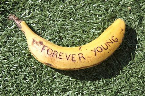 lista de alimentos con omega 3 eterna juventud alimentos con vitamina a c d y e