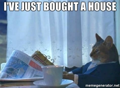 i just bought a house i ve just bought a house newspaper cat realization meme generator