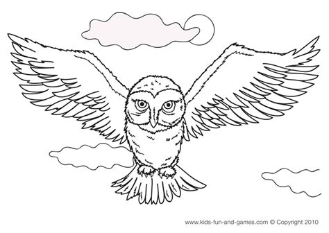 harry potter coloring pages crookshanks image hedwig owl coloring pages gif dungeons and