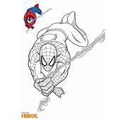Coloriages Spiderman Gratuits Sur Le Blog De Tous Les H&233ros