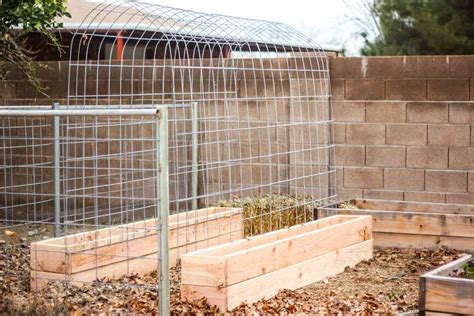 build a garden trellis how to make a trellis raised garden box combo