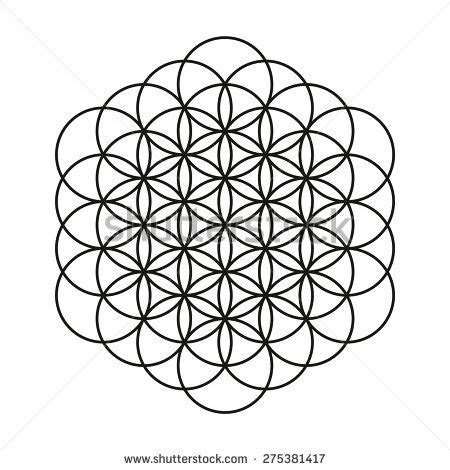 flower life tattoo design mandala circle stock vector