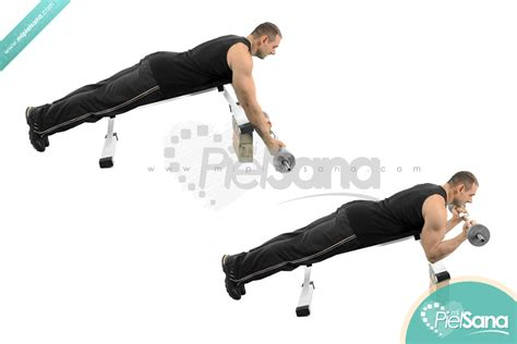 incline bench bicep curl lying barbell curl on incline bench