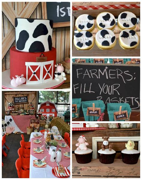 Ideas For Theme - kara s ideas rustic barnyard 1st birthday