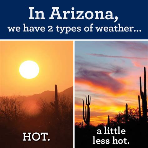 Funny Hot Weather Memes - 55 best images about az summer humor on pinterest satan