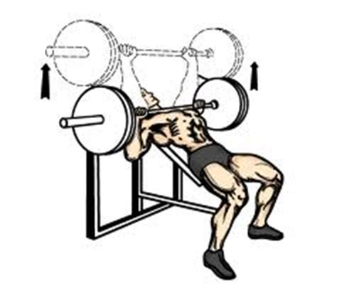 chris davis bench press incline bench press popworkouts