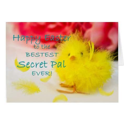 for secret pal easter secret pal cards zazzle