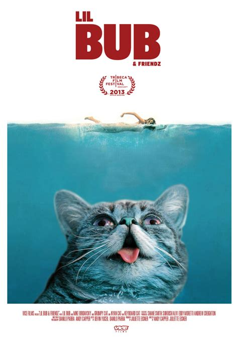 Lil Bub Meme - lil bub friendz premieres at tribeca vice united states