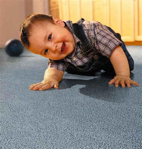 absolute clean carpet cleaning specialists springfield