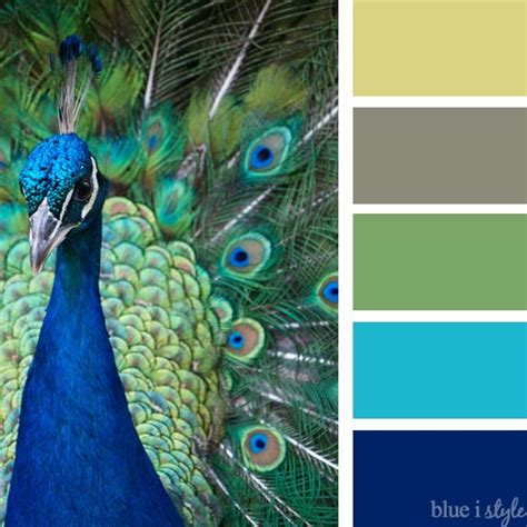 colour combination with blue 25 best ideas about peacock color scheme on pinterest