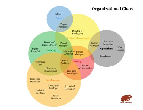 organizational diagrams a company organization chart you can believe in metal toad