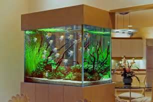 Aquarium Design 40 New Style Aquarium Design Ideas For Your Home