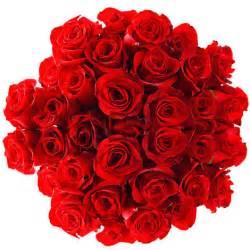 envoye des fleurs livraison de fleurs envoyer des bouquets ou plantes de