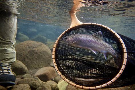 Handmade Fishing Net - handmade landing nets the new wave tomsutcliffe the