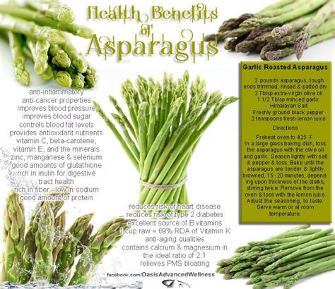 Asparagus Liver Detox by Cancer Diets Health Benefits Of Asparagus Liver