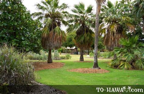 Nui Botanical Gardens by Nui Botanical Gardens