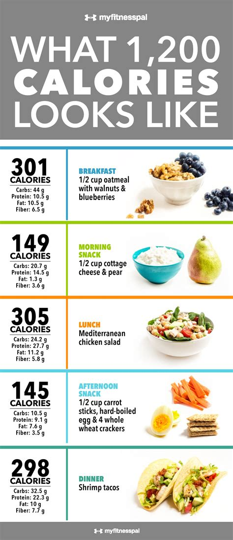 carbohydrates 2000 calorie diet what 1 200 calories looks like infographic myfitnesspal
