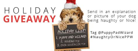Free Puppy Giveaway - puppypad wizard review christmasmdr14