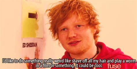 ed sheeran quotes funny ed sheeran quote gif tumblr