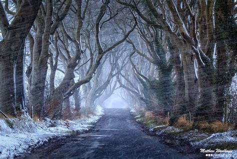 glitter wallpaper northern ireland the stunning tree tunnel you saw on game of thrones is