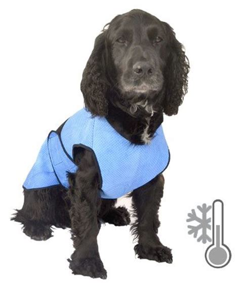 cooling vest for dogs 1000 images about cooling vest on