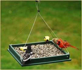 Kids In Bathtub Handmade Bird Feeders Home Design Ideas