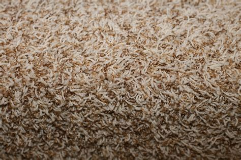 rite rug dayton ohio rite rug reviews 28 images rite rug reviews roselawnlutheran living room furniture dayton