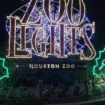 houston zoo lights hours zoo lights 199 photos 99 reviews festivals 6200