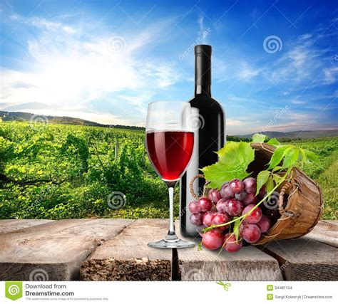 the italian dream wine 1614285195 red wine and vineyard stock photo image of agriculture 34481154
