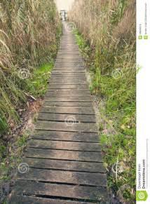 chemin en bois de planche photo stock image 46848878