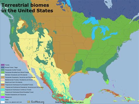 biome map of the united states atlas of global conservation ecowest org