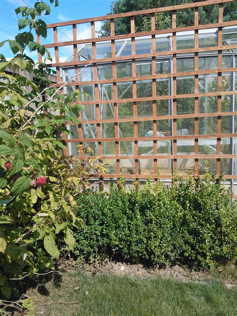 Large Trellis Large Square Trellis Panels Bright Fencing