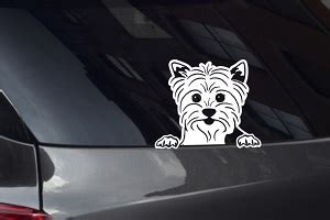 yorkie decal looking out decals stickers decalboy