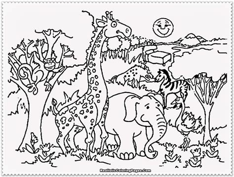 safari animals coloring pages preschool preschool zoo coloring pages coloring home