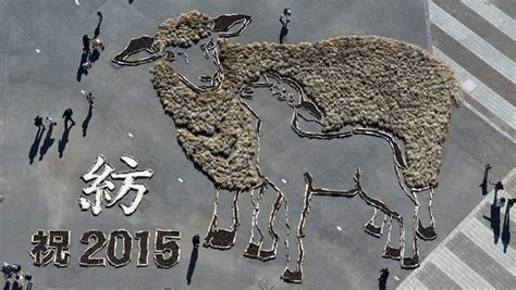 new year animal new year 2015 animal year of goat sheep