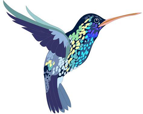 hummingbird clip art creation creatures