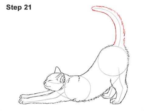 how to draw doodle cat cat drawing www imgkid the image kid