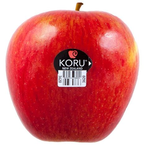 apple new zealand koru new zealand apples borton fruit