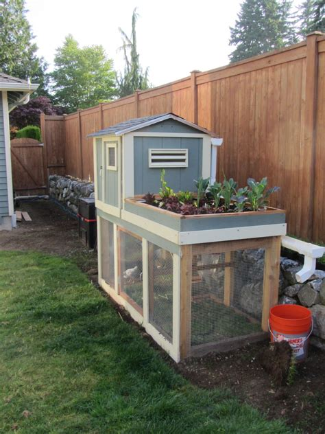 post your chicken coop pictures here page 41