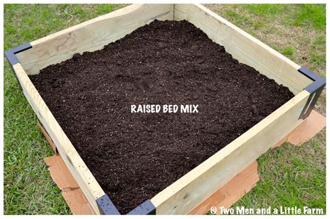 soil for raised beds two men and a little farm raised bed soil for fruit trees