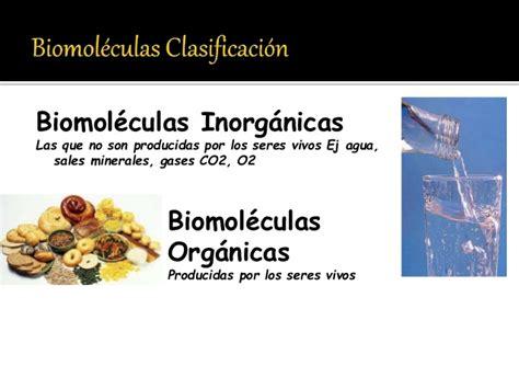 bioelementos 10